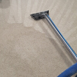 carpet-cleaner-gainesville