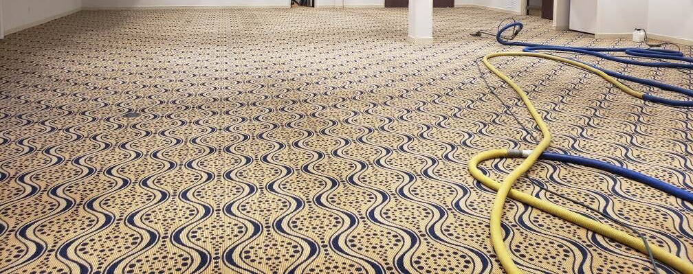 carpet-cleaning-company-gainesville