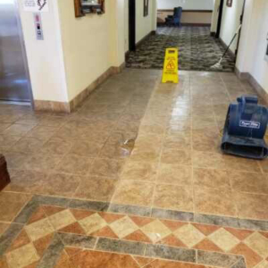 Carpet Cleaning Gainesville Fl Carpet Cleaners